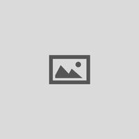 David Bardos